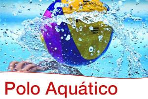 polo-aquatico